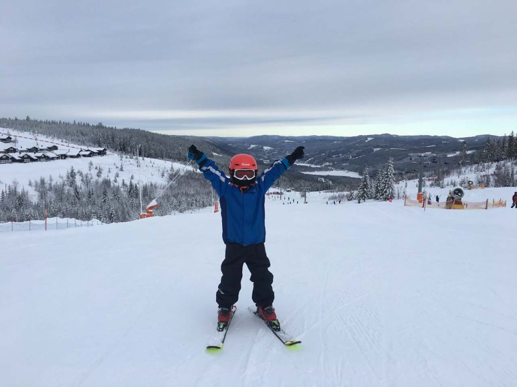 Valdemar på ski